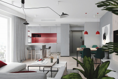 2-nowowczesne-nawiazanie-do-stylu-vintage-_-apartamentowiec-w-Warszawie-jasne-wnętrze-z-mocnymi-dodatkami-czerni-i-bordo